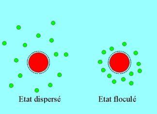Colloïdes et les macromoléculaires