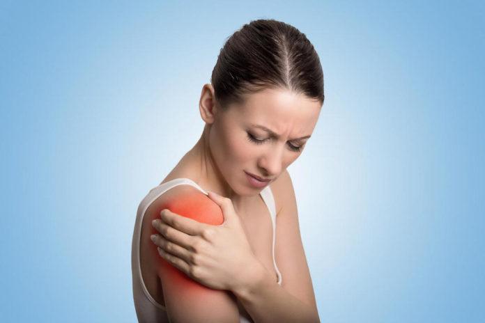Complexe articulaire de l'épaule