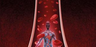 Généralités sur l'angéiologie -