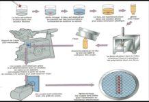 Figure 2. Résumé de la méthode de préparation des coupes.