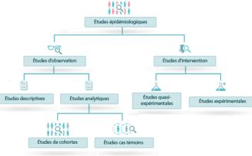 Épidémiologie descriptive