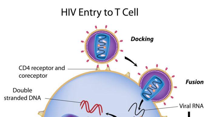 Infection HIV, manifestations cliniques et aspects thérapeutiques