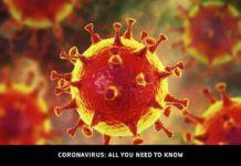 Coronavirus 2019 n-CoV (Wuhan)